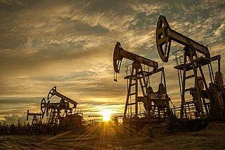 Ropa v závěru týdne sílí, její zisky ale brzdí pandemická situace v Indii